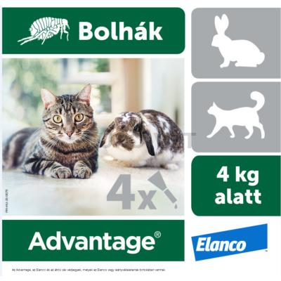 Advantage rácsepegtetõ oldat kistestû macskáknak és nyulaknak A.U.V. 4x0,4 ml ampulla