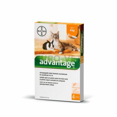 Advantage rácsepegtetõ oldat kistestû macskáknak és nyulaknak A.U.V. 1 db 0,4 ml ampulla bontott dobozból