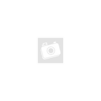 DOG CHOW Adult Light Pulykával 2,5 kg