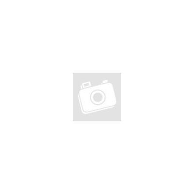 DOG CHOW Puppy Báránnyal száraz kutyaeledel 2,5kg