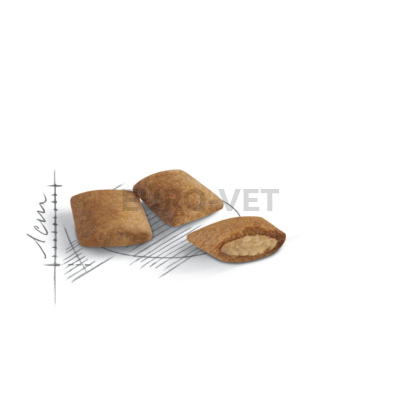 Royal Canin Ageing 12+ (4 kg)