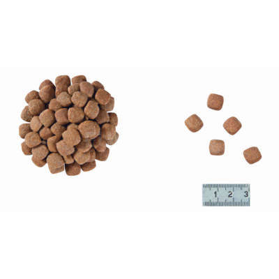 Royal Canin Senior Consult Stage 1 - száraz gyógytáp az öregedés jeleit nem mutató felnőtt macskák részére 7 éves kor felett 0,4 kg