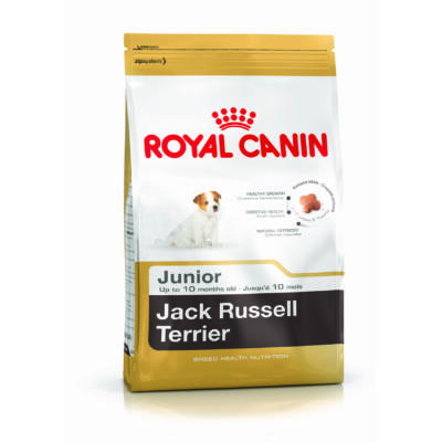 Royal Canin Jack Russell Terrier Junior 0,5 kg