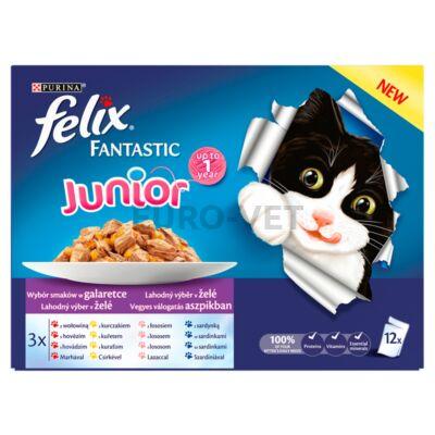FELIX FANTASTIC Junior Vegyes válogatás aszpikban nedves macskaeledel 12x100g